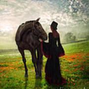 Poppy In The Field  Poster