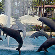 Porpoise Statues   Maui Hawaii Poster
