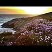 Porth, Cornwall #sky #sunset #sunshine Poster