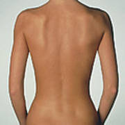 Posterior View Of The Torso Of A Standing Woman Poster