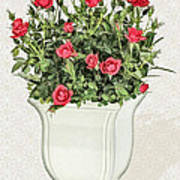 Pot Of Red Roses On Lace Background Poster