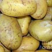 Potatoes Poster