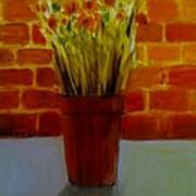 Potted Flowers Poster