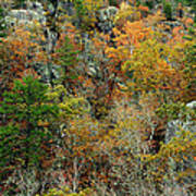Prarie Hollow Gorge In Autumn Poster