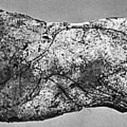 Prehistory: Engraving Poster