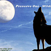 Preserve Our Wildlife Poster