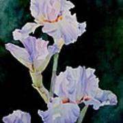 Pretty In Purple Poster by Bobbi Price