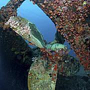 Propeller Of Hilma Hooker Shipwreck Poster