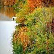 Prosser Autumn Docks Poster by Carol Groenen