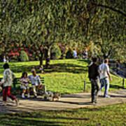 Public Garden 11 Poster