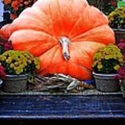 Pumpkin And Flowers Poster