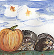Pumpkin And Puppies Poster by Pamela Wilson