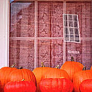 Pumpkins Curtains Red Barn Poster