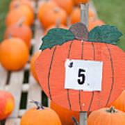 Pumpkins For Sale II Poster