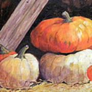 Pumpkins In Barn Poster