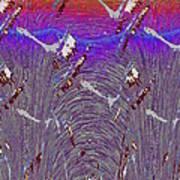 Purple Haze Poster by Tim Allen
