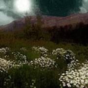 Purple Mountain Meadow Poster