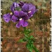 Purple Painted Flowers Poster