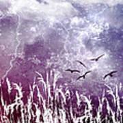 Purple Skies Poster