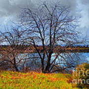 Quarry Lakes In Fremont California . 7d12636 Poster by Wingsdomain Art and Photography