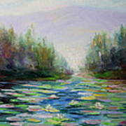 Quiet Stream - Cascade Mountains Poster