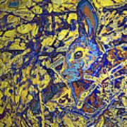 Rabbit In Brush Poster