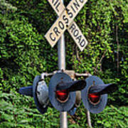 Railroad Crossing Light And Greenery Poster