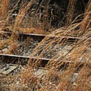 Rails Retired Poster