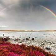 Rainbow By The Lake Poster