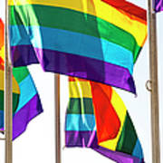 Rainbow Pride Flags Against White Background Poster