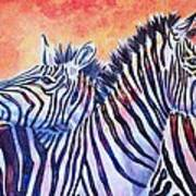 Rainbow Zebras Poster by Diana Shively