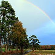 Rainy Day Rainbow Poster