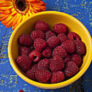 Raspberries In Yellow Bowl Poster by Garry Gay
