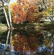Red Cedar Reflections Poster