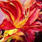 Red Day Lily Poster