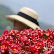 Red Flowers And Straw Hat Poster