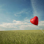 Red Heart Balloon, Blue Sky And Fields Poster
