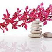 Red Orchid With Balance Stone Poster