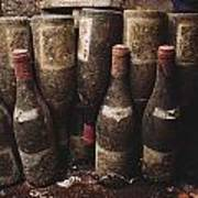 Red Wine Bottles, Covered With Mold Poster by James L. Stanfield
