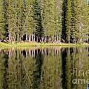 Reflections Along Summit Lake Poster