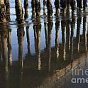 Reflections Avila Beach California Poster