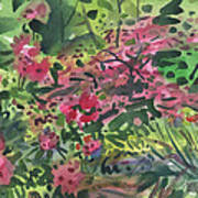 Rhododendrons And Azaleas Poster