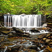 Ricketts Glen Waterfall Oneida Poster