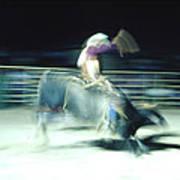 Ride Him Cowboy Poster