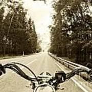 Riders Eye Veiw In Sepia Poster