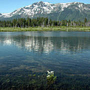 Ripples On Lake Of Mt Tallac Poster