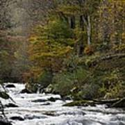 River Lyn In Autumn Poster