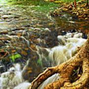 River Rapids Poster by Elena Elisseeva