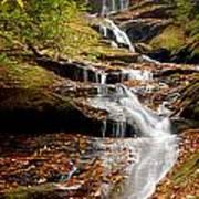 Roaring Fork Falls Poster