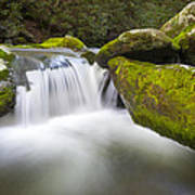 Roaring Fork Great Smoky Mountains National Park - The Simple Pleasures Poster by Dave Allen